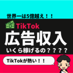 TikTokで広告収入っていくら稼げる?【世界一は5億越え!?】